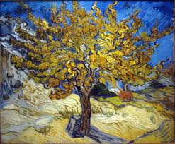 The Mulberry Tree by Vincent Van-Gogh